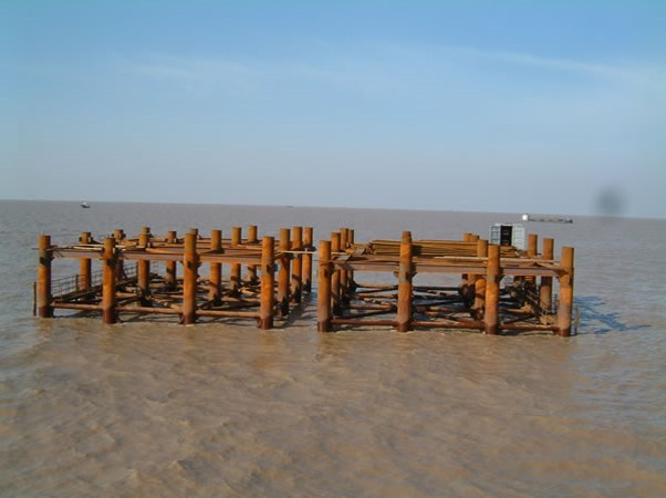 钢混凝土结合梁双塔单索面斜拉桥施工技术