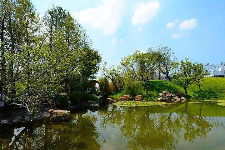 景观水景常用的4种防水材料