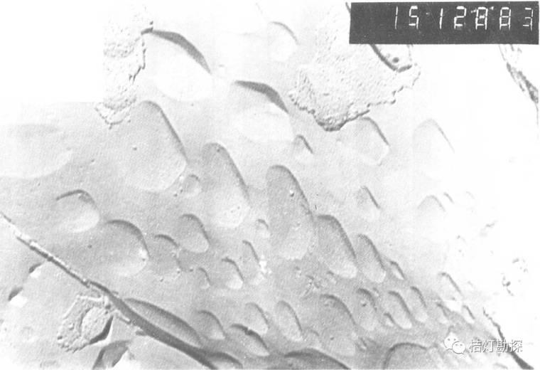 经典地质构造图(249幅)_220