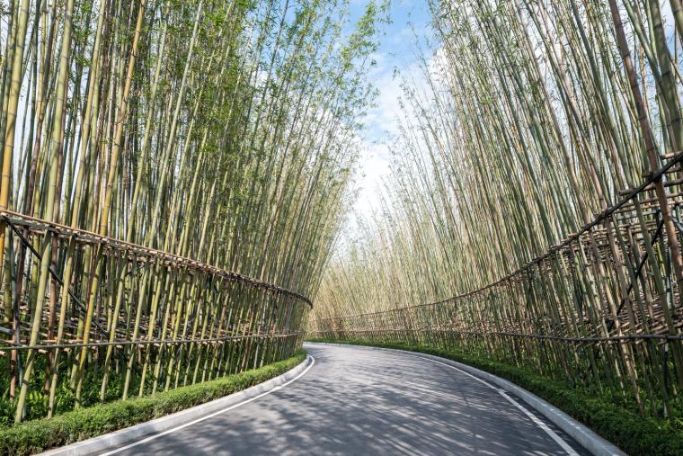 Chengdu_Tianfu_09