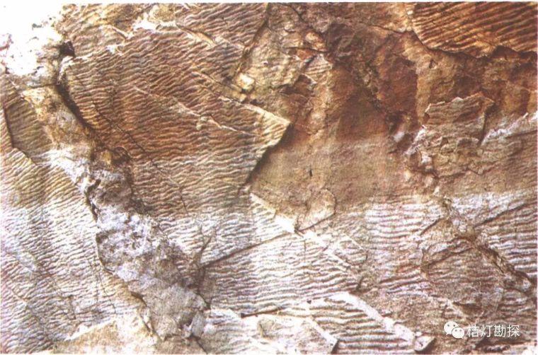 经典地质构造图(249幅)_9