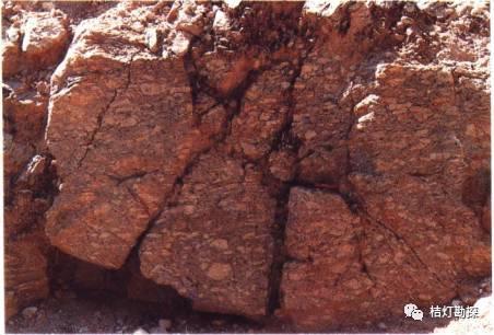 经典地质构造图(249幅)_126