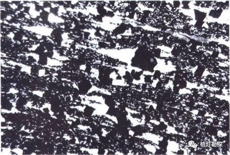 经典地质构造图(249幅)_206