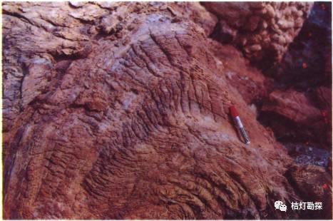 经典地质构造图(249幅)_168