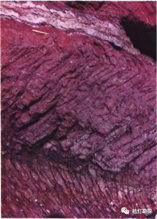 经典地质构造图(249幅)_170