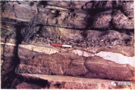 经典地质构造图(249幅)_187