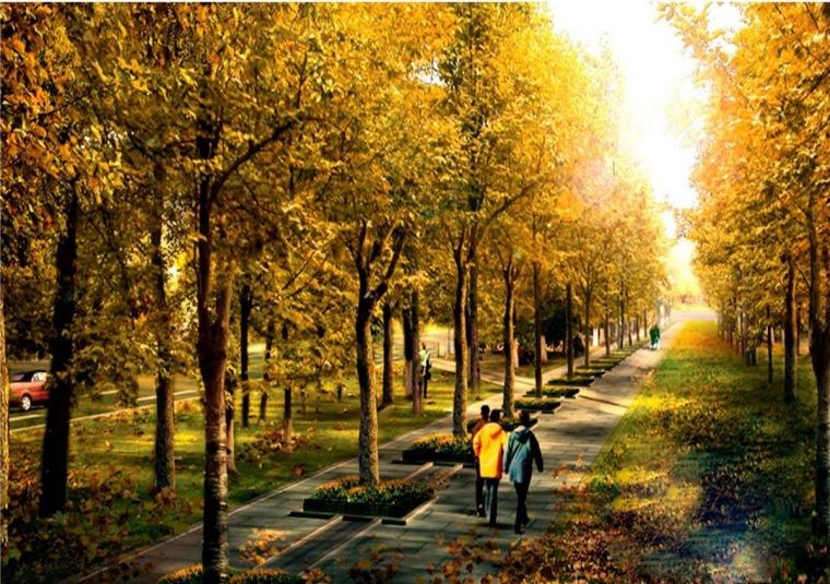 林间步道景观效果图