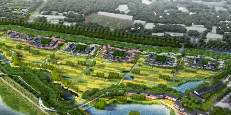 [四川]田园农耕文化湿地公园景观设计方案-精品农庄休闲区效果图