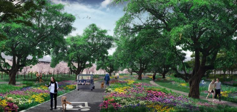 [四川]田园农耕文化湿地公园景观设计方案-特色花径效果图