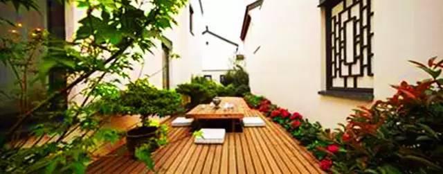 植物空间营造·知识汇总_16