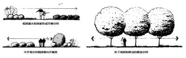 植物空间营造·知识汇总_8