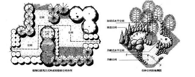 植物空间营造·知识汇总_13