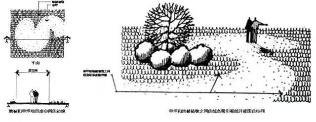 植物空间营造·知识汇总_2