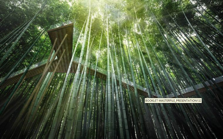 竹林玻璃栈道景观效果图