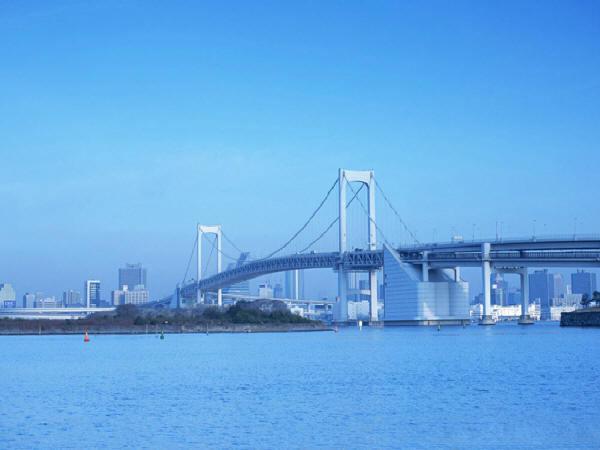 桥涵养护技术及案例分析(220页)