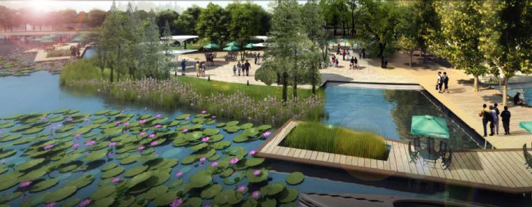 [浙江]湖州自然风貌生态景区景观规划设计-滨水木栈道效果图