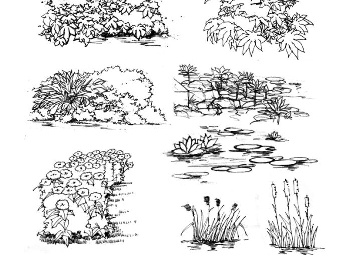 35张手绘配景练习示例(植物人物小品)-手绘配景练习示例1