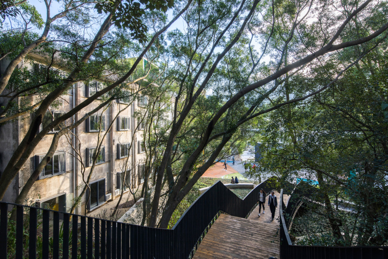 13-Forest_promenade_starting_from_home_plaza_©Zhang_Chao