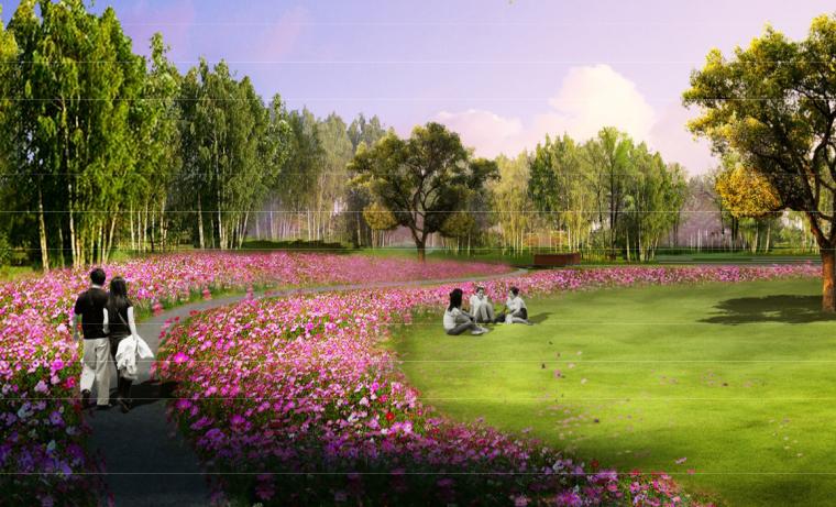 花海草坪效果图