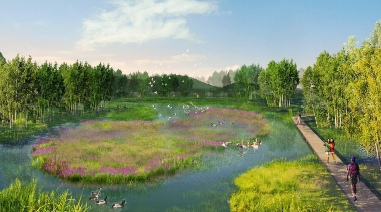 湿地泡效果图