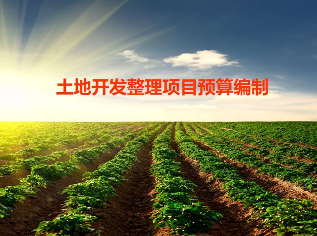 土地开发整理项目工程预算编制