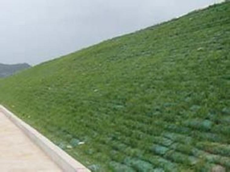 拱形骨架与植草护坡施工方案