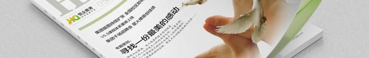 企业文化手册_网站设计_物料设计