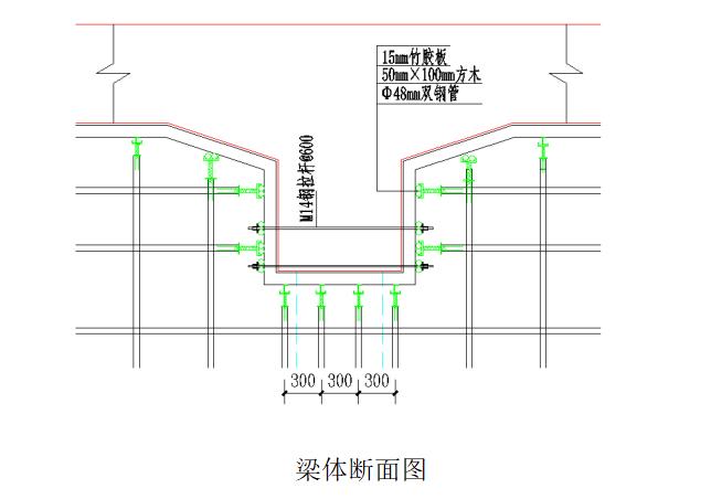 [浙江]地铁车站主体结构施工组织方案-梁体侧断面图