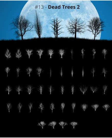 PhotoShop笔刷-600种景观植物立面笔刷