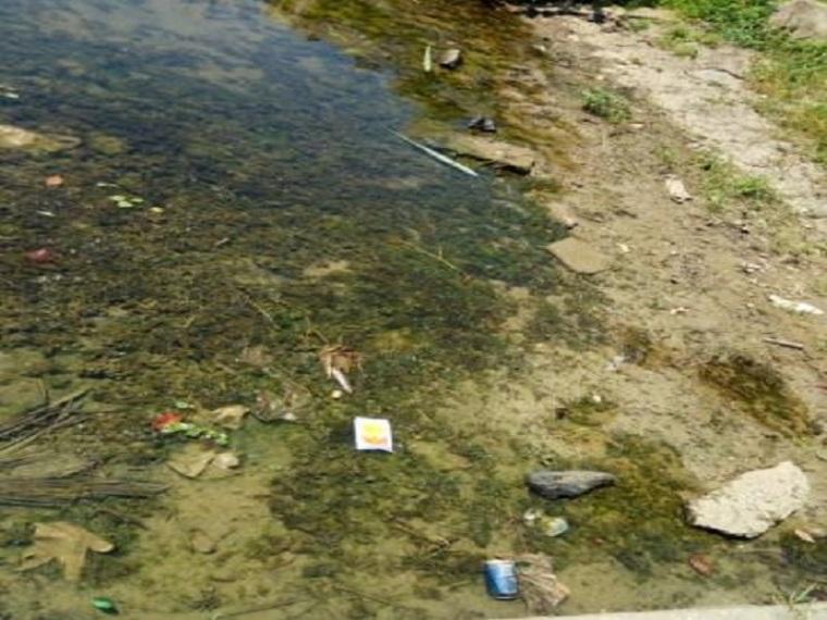 河道水环境综合整治工程施工方案