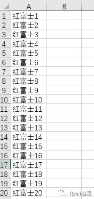 Revit通过dynamo批量替换族参数_5