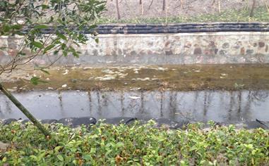 河道周边环境