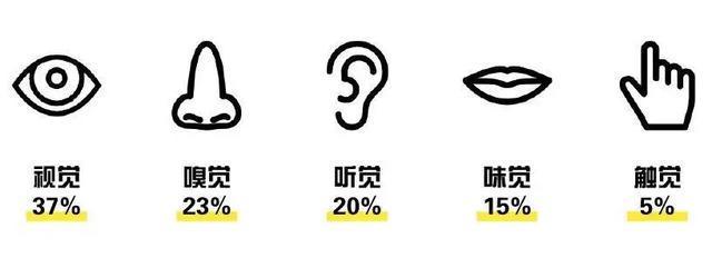如何用五感设计,全方位俘获消费者的心?_2