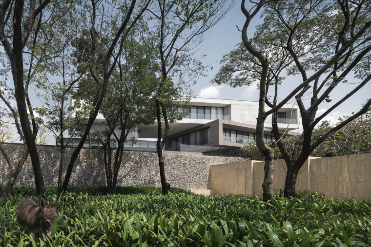 Twisted_House___Architects_49_House_Design_6