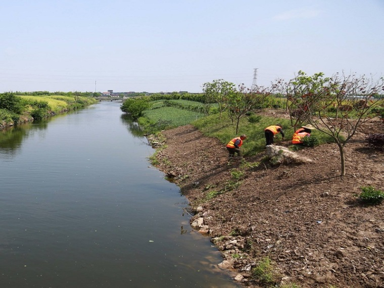 河道整治改造及挡墙工程施工方案