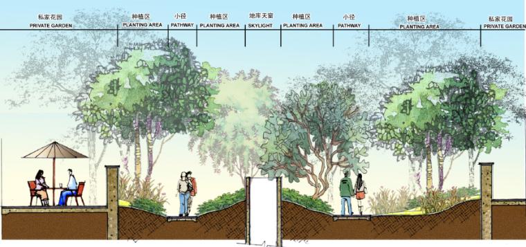 香之园剖面图