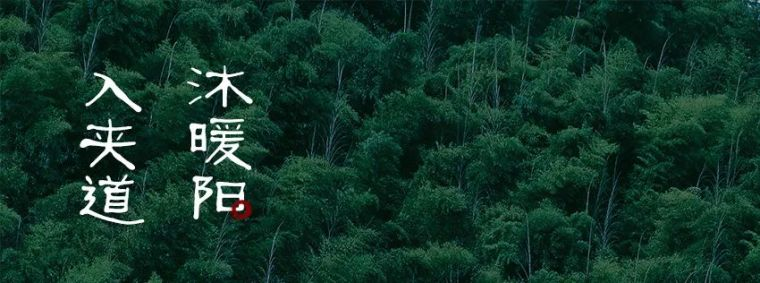 以安静轻盈姿态,赴约自然_融创·云麓长林_27