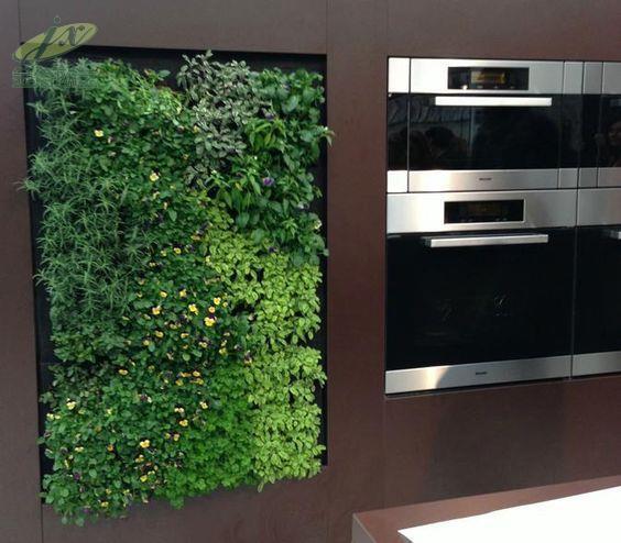 影响绿植墙生命期的因素有哪些