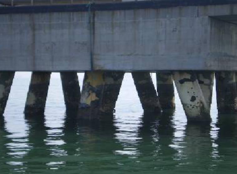 我国港口码头腐蚀状况调查及控制研究(PPT