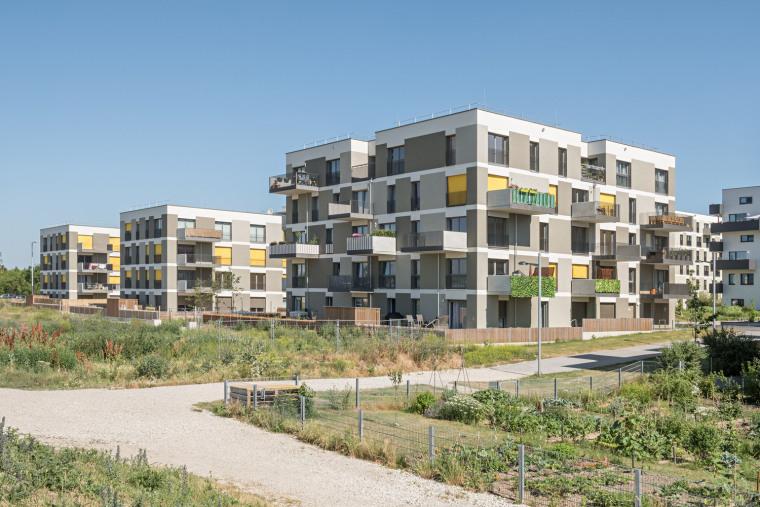 高层筏板基础住宅基坑土方开挖工程施工方案
