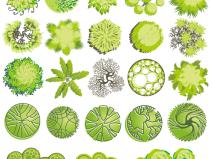 青春系彩平植物素材AI