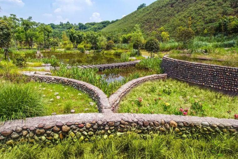 十条人工湿地景观设计宝典,你知道多少?_9
