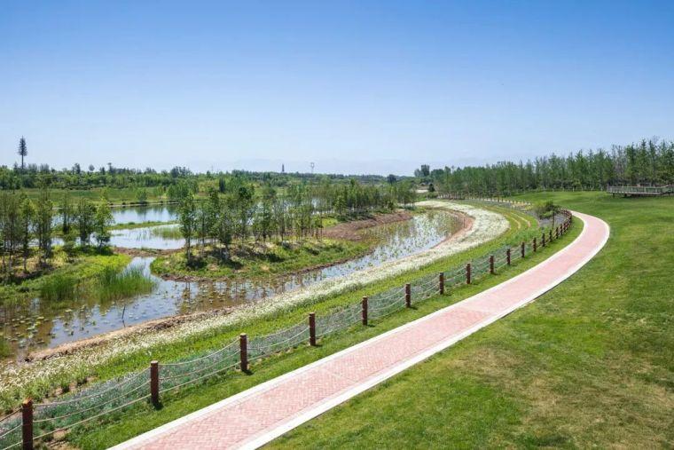 十条人工湿地景观设计宝典,你知道多少?_7