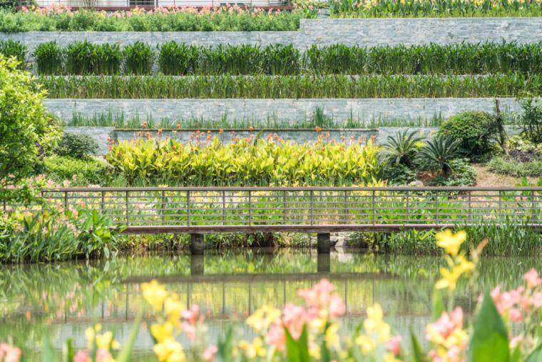 十条人工湿地景观设计宝典,你知道多少?_10