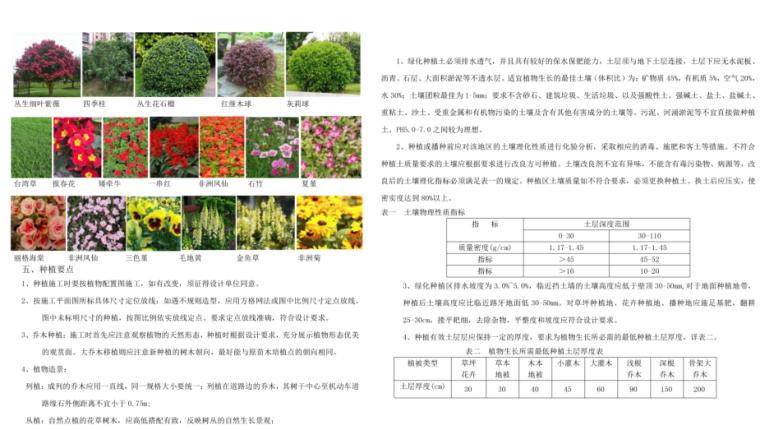 6-绿化工程设计说明