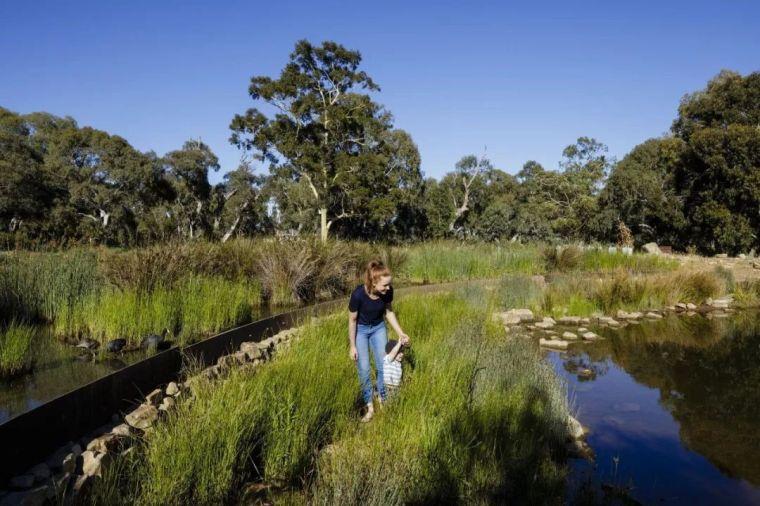 十条人工湿地景观设计宝典,你知道多少?_2