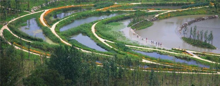 十条人工湿地景观设计宝典,你知道多少?_4