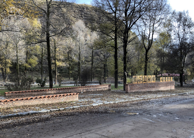 2-The-construction-of-rural-public-space-in-the-forest-of-Populus-alba-Qianghai-by-China-New-Rural-Planning-and-Design