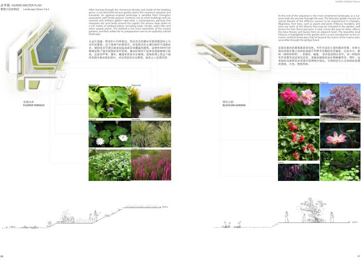 华为成都产业园区二期建筑设计方案文本2019-景观分析