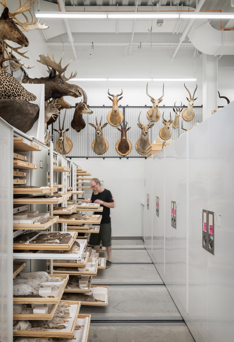 3-the-burke-museum-of-natural-history-culture-by-olson-kundig-architects